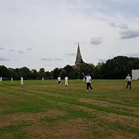 We encounter a 'sticky wicket' as we take on Gerald Edelman on the cricket pitch