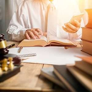 what do employment lawyers for employers do